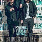 Blindspotting 2018 720p BluRay x264-TFPDL